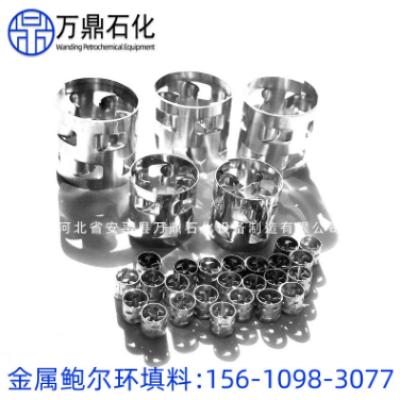 厂家直销不锈钢金属鲍尔环填料 304鲍尔环填料批发化工填料