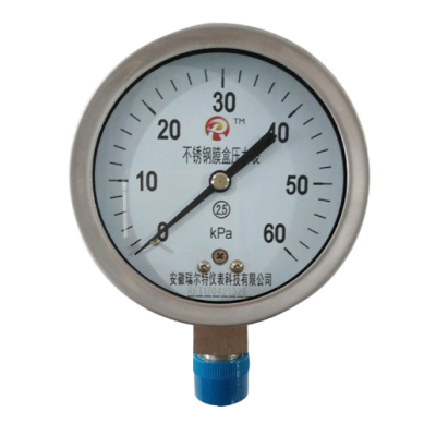 RET/瑞尔特 不锈钢膜盒压力表 YE-150H/M20/不锈钢外壳/不耐震/2.5级 1个